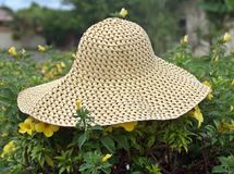 帽子XVII 免版税库存图片