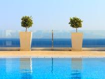 从干净的游泳池的美好的海视图与植物decoratio 免版税库存图片