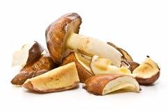 干净的烹调蘑菇 免版税库存照片