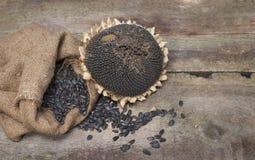 干向日葵和种子在粗麻布袋在木背景 图库摄影