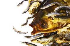 干和抽烟的鱼 库存照片