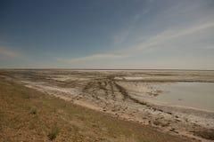 干咸海在夏天、水危机在行星和气候变化的概念 库存图片