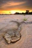 干地带和沙丘 免版税库存照片