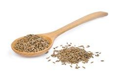 干小茴香籽或香芹籽在白色隔绝的木匙子 免版税库存图片