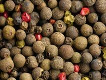 干干胡椒的混合 免版税库存图片