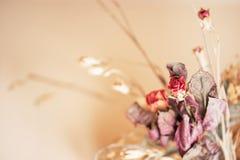 干微小的玫瑰的花束在米黄背景的 免版税库存照片