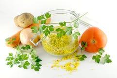 干快速汤蔬菜 免版税库存照片