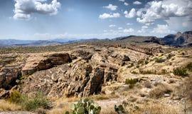 干旱的亚利桑那desrt横向 库存照片