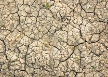 干旱的情况 免版税图库摄影