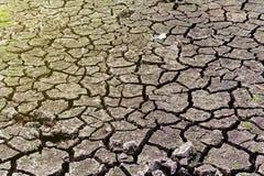 干旱的旱田 库存图片