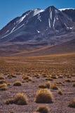 干旱的沙漠风景在安地斯 免版税库存照片