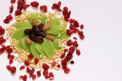 干果子和坚果-犹太人的假日Tu Bishvat的标志 图库摄影