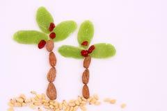 干果子和杏仁-犹太人的假日Tu Bishvat的标志 免版税图库摄影