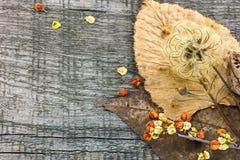 干植物、绽放和叶子在老木桌上 秋天后面 免版税库存图片