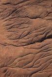 干河床,纳米比亚 库存照片