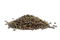 干法国绿色查出的扁豆堆puy 图库摄影