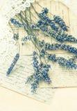 干淡紫色花、鞋带和老情书 免版税库存照片