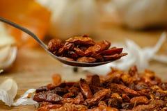 干炽热小辣椒在匙子和在小陶瓷板材 免版税图库摄影