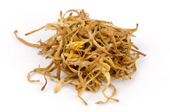 干燥共同的橙色黄花菜,黄褐色的黄花菜(萱草属植物Fulva-Linn。)。 库存照片