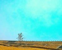 干燥农场 免版税库存照片