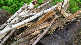 干燥分支和木柴 为火做准备 股票录像