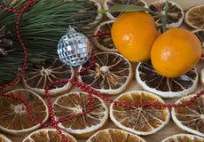 干燥切片柠檬和新鲜的普通话 库存图片