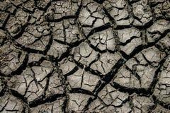 干燥和破裂的泥泞的地球 库存照片