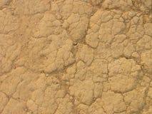 干燥地球 免版税图库摄影
