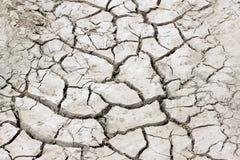 干燥地球 库存图片