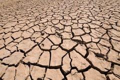 干燥地面地球细节  库存图片