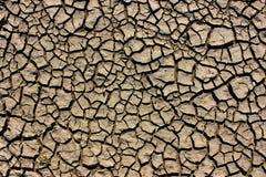 干燥夏天黏土土地板 免版税库存照片