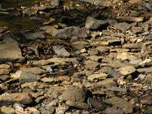干燥小湾河床铺与石头 免版税库存照片