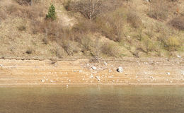 干燥山湖细节 免版税库存照片