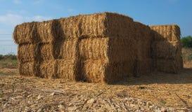 干燥干草被堆积的块  免版税图库摄影