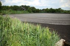 干燥排汇物到肥料里 干燥污水的湖 排泄粪 免版税图库摄影