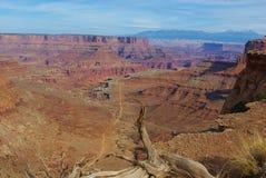干燥日志、深渊、路和山, Canyonlands Nationalpark 库存图片