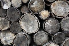 干燥木柴 免版税库存图片
