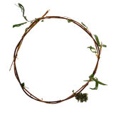 干燥杨柳枝杈滚动了入圆环 免版税图库摄影
