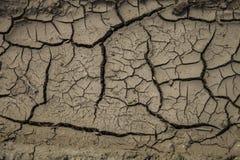 干燥棕色地球特写镜头 免版税图库摄影