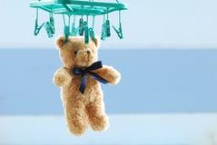 干燥棕色玩具熊垂悬与室外的钳位 库存图片