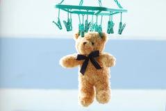干燥棕色玩具熊垂悬与室外的钳位 库存照片