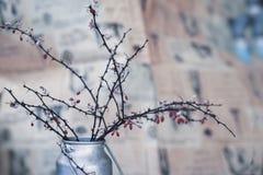 干燥棘手的分支用在金属水罐,静物画的莓果,仿照在被弄脏的背景的ikebana样式在蓝色口气 免版税库存图片