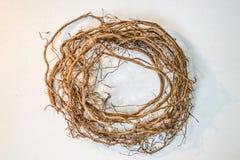 干燥植物根花圈  免版税库存图片