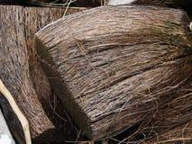 干燥椰子粗硬纤维 免版税图库摄影