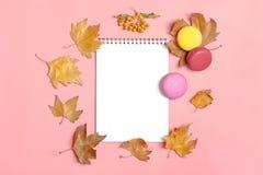 干燥槭树叶子、蛋白杏仁饼干和白色笔记薄在要做名单嘲笑的桃红色背景秋天概念顶视图舱内甲板位置 库存图片