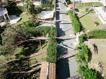 干燥气候灾害自然泰国 免版税库存照片