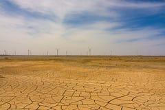 干燥沙漠 库存图片