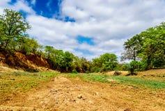 干燥河在11月,旱季的结尾,在克留格尔国家公园 免版税库存照片