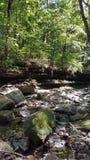 干燥河床的小河 免版税图库摄影