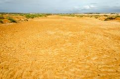 干燥河床 免版税库存图片